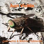 Jyrki Lehto & Markku Toikkanen: Just Visitin