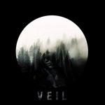 Chronoform: Veil
