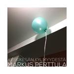 Markus Perttula: Keskikesän kylmyydestä