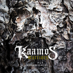 Kaamos Warriors: Ruined by Plague