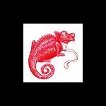 Pink Chameleons: Songs EP