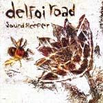 Delfoi Road