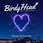 BirdyHead (feat. Hank Heaven): Heart in Flames