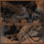 Wårpath: Mutual Assured Destruction