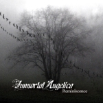 Immortal Angelica: Reminiscence