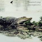 Tranes: Traveling Incognito