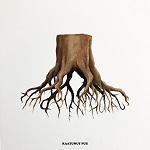 Timo Pieni Huijaus: Kaatunut puu
