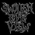 Swollen Eye View