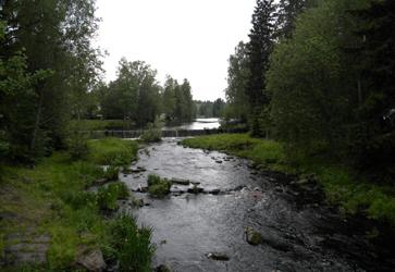 Suomalaista maisemaa Törnävältä