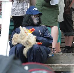 Gorilla ja poliisikoira