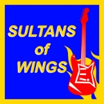 Radical Ninja: Sultans of Wings