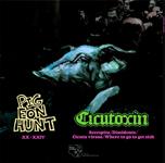 Pigeon Hunt / Cicutoxin: Split LP