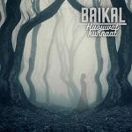 Baikal: Huojuvat kunnaat