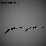 Darwin HC