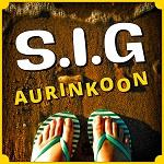 S.I.G: Aurinkoon