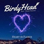 BirdyHead (feat. Hank Heaven): Heart in Flames