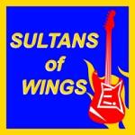 Radical Ninja: Sultans of Wings